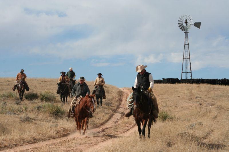 cowboys cows windmill