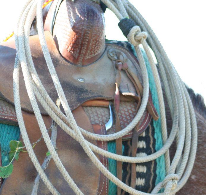 rope branding 16 077