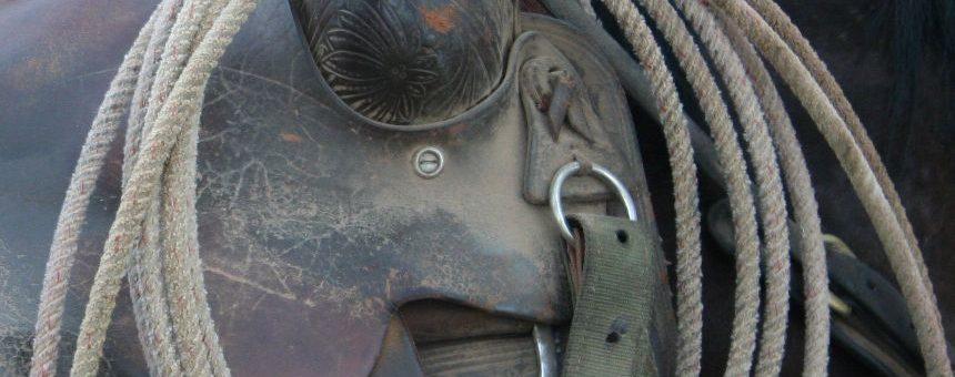 Cowboy Gear: Ropes